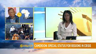 Cameroon grants special status for English-speaking regions [Morning Call]