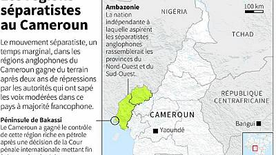 Cameroon separatists dismiss 'Anglophone special status', insist on independence