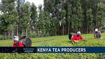Kenya: Diversifying tea production [Business Africa]