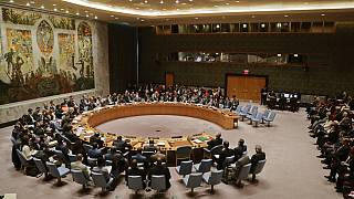 Niger, Tunisia among latest non-permanent members of U.N. Security Council