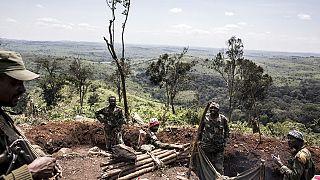RDC : 16 miliciens tués par l'armée dans le nord-est