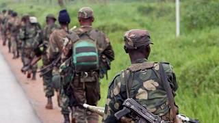 RDC : 30 soldats tués dans l'offensive contre le groupe armé ADF (armée)