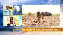 Two armed groups to fight insecurity in central Mali [Morning Call]