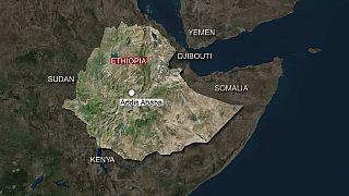 Epiphanie en Ethiopie : au moins dix morts dans l'effondrement d'une plateforme (médecins)
