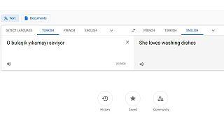 Google O bulaşık yıkamayı seviyor için kadın şahıs zamiri Sheyi seçiyor
