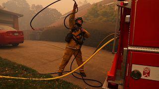 """Califórnia: Incêndio """"Kincade"""" é o mais crítico para os bombeiros"""