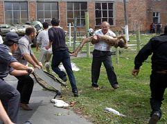 В результате теракта и штурма были ранены более 700 заложников.