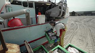 OCEAN EP5 - Small scale fisheries