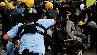 Scuffles broke out between police and protesters