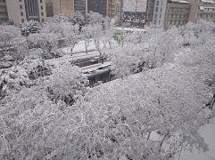 Χιόνια στην Αθήνα, Συγγρού - Φιξ