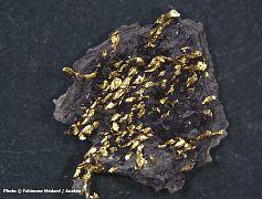 Restes d'un tissage constitué de fils d'or pris dans le sédiment imprégné d'une teinte violacée
