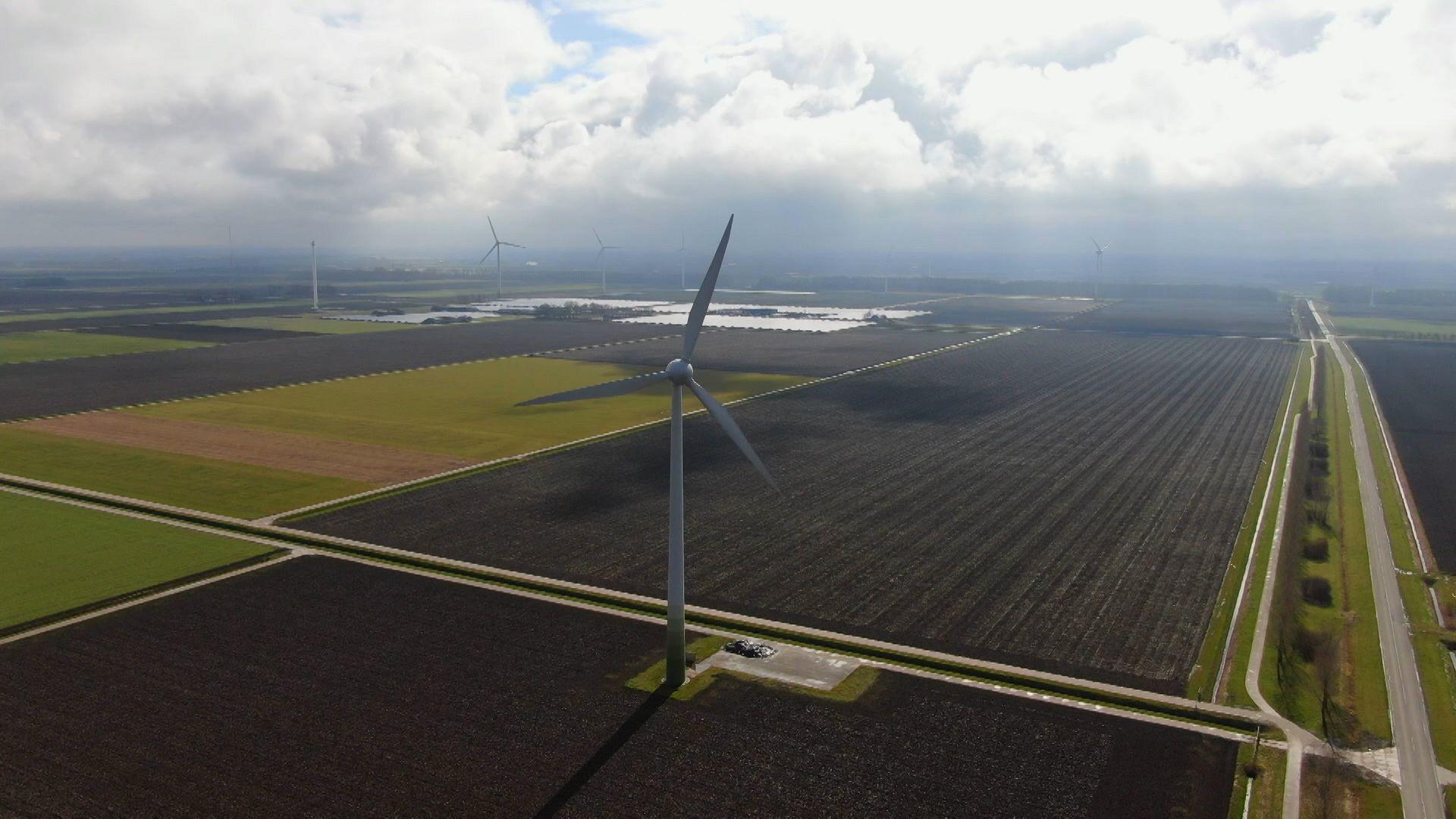 Fermë në pirun: Inno dhe Agri Hollandë