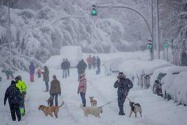 Ciudadanos pasean a sus mascotas durante en Rivas Vaciamadrid, España, el 9 de enero de 2021.