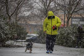Ein Mann geht mit seinem Hund Gassi, Rivas Vaciamadrid, Spanien, 7.1.2021