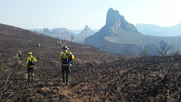 Fire fighters walk in the burned region of Robore where wildfires have destroyed hectares of forest in Bolivia, August 19, 2019.