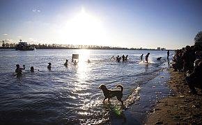 Eisbader schwimmen in der vereisten Elbe, Hamburg, Deutschland, Freitag, 12.02.2021.