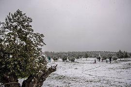 Spaziergänger im Schnee, Vaciamadrid, Spanien, 7.1.2021