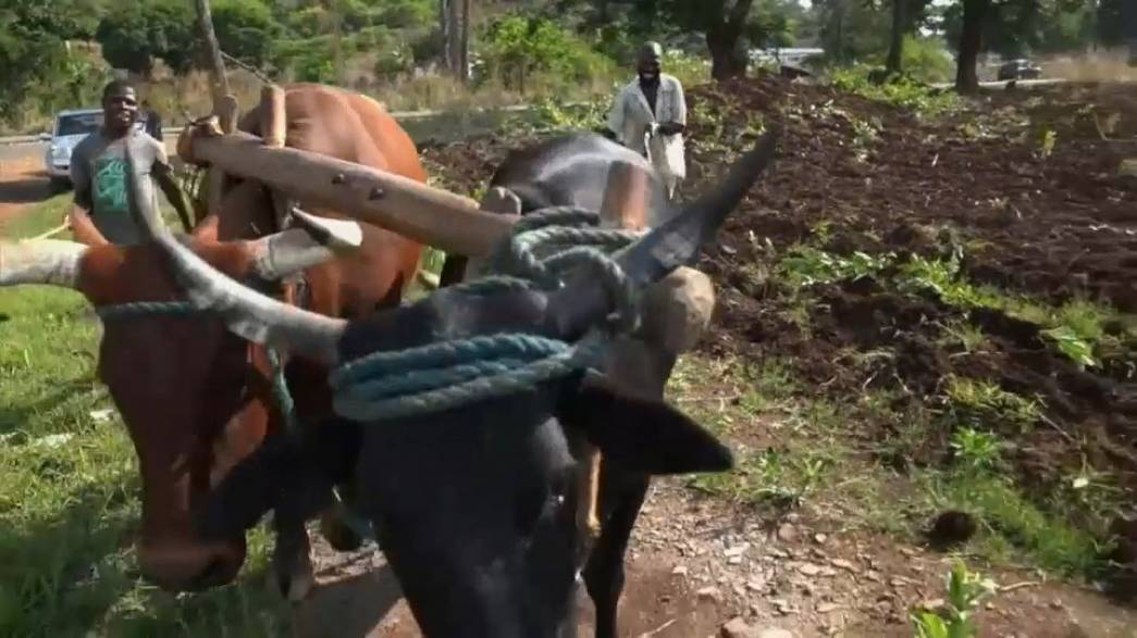Зимбабве ждет перемен