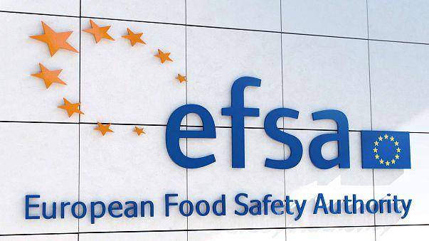 I 15 anni della ''Food Law'', che permise la creazione dell'EFSA