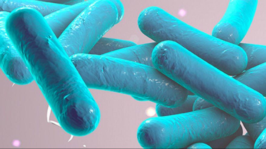 Direção-geral de Saúde declara fim do surto de Legionella