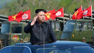 North Korea 'fires ballistic missile' that landed close to Japan