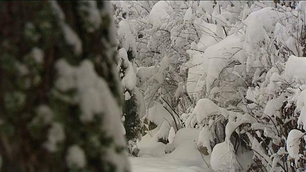 Erster Schnee in Ungarn und Polen
