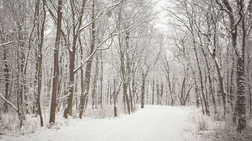 Τα πρώτα χιόνια στην Πολωνία