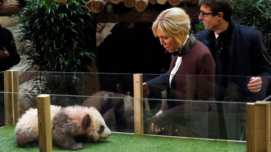 Brigitte Macron baptise le petit panda de Beauval