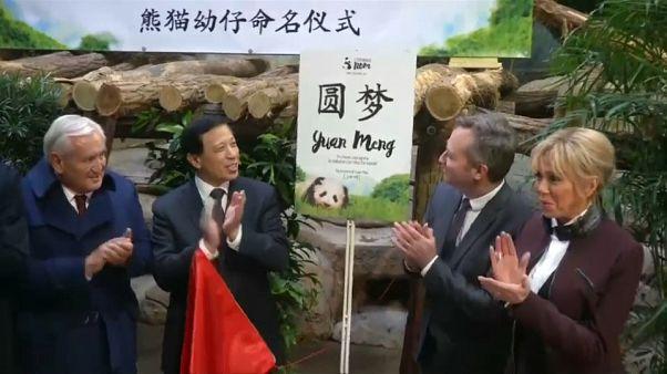 Panda : un baptême symbolique et diplomatique