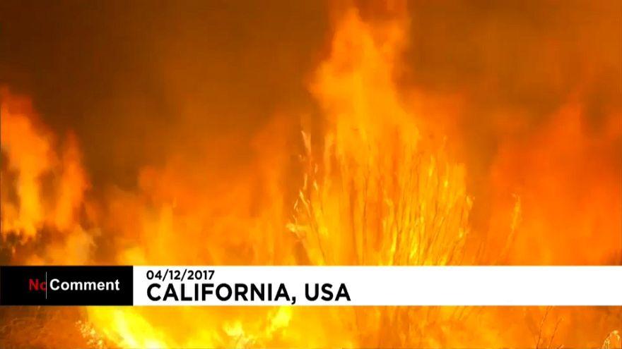 Califórnia: Incêndio obrigou centenas a abandonar casas