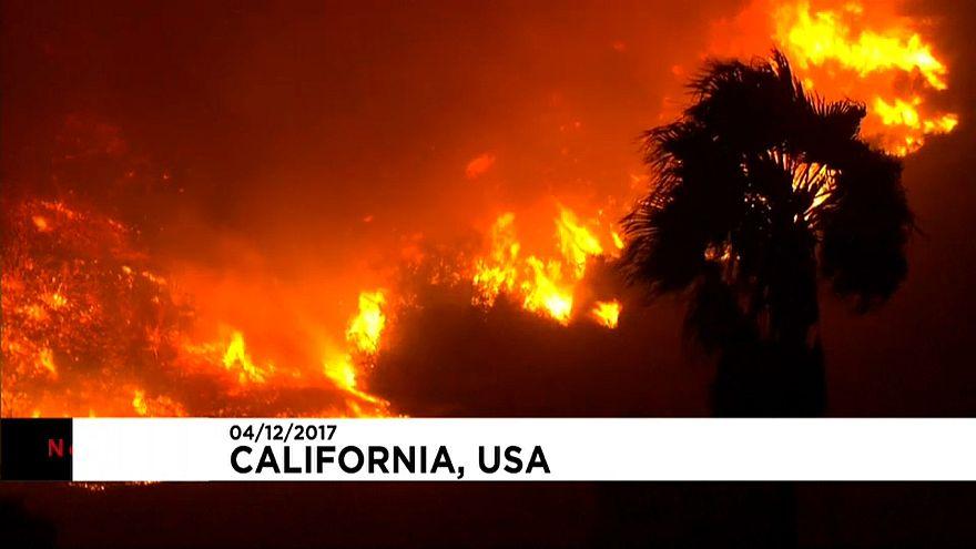 Новый лесной пожар в Калифорнии