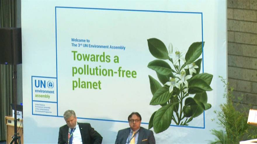 III Asamblea de Naciones Unidas para el Medio Ambiente
