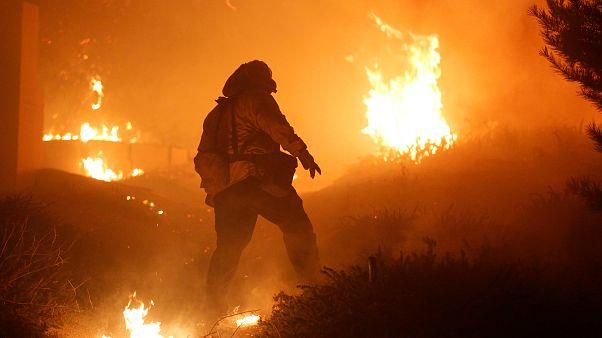 Incendi in California: le fiamme sono arrivate anche a Los Angeles