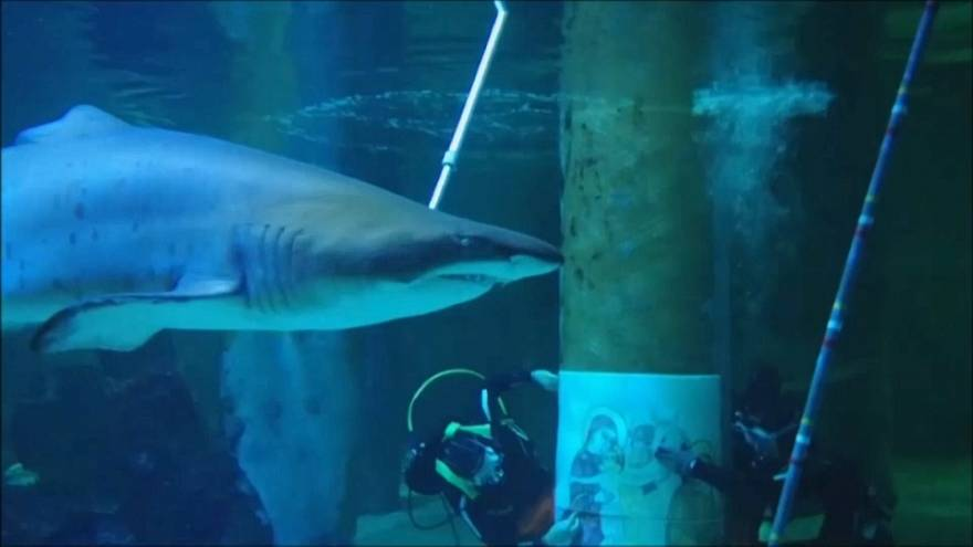 Una Natividad entre tiburones