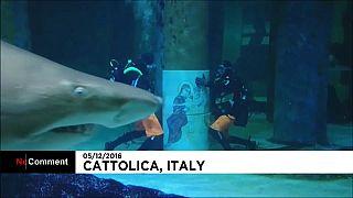 Sandtigerhaie feiern Weihnachten