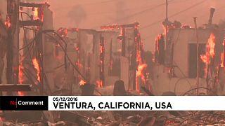 Пожары в Калифорнии не утихают