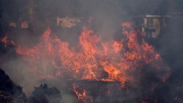 Buschfeuer bedrohen Los Angeles