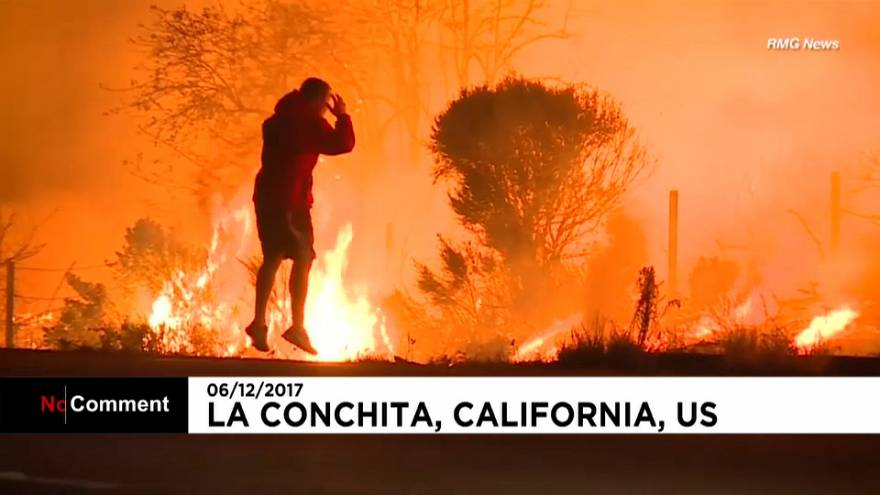 Kalifornien: Mann rettet Hase vor den Flammen