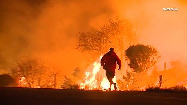 Incêndios causam drama na Califórnia