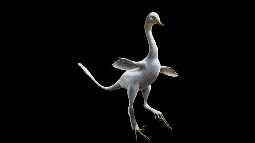 Hallada una nueva especie de dinosaurio que mezcla diversos animales