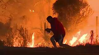 Άνδρας στην Καλιφόρνια αψηφά τις φλόγες για να σώσει ένα αγριοκούνελο