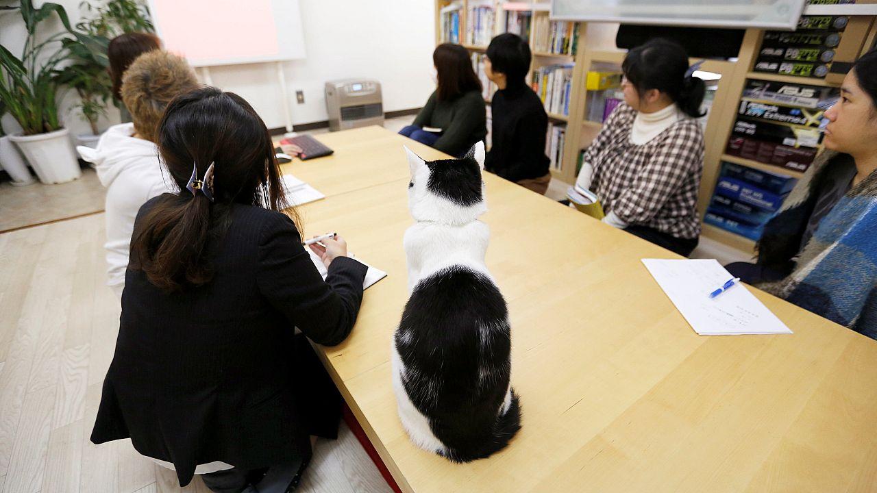 يابانيون في مكان للعمل