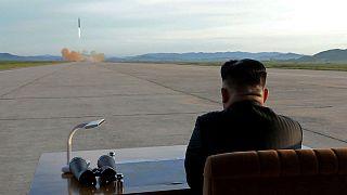 نماینده سازمان ملل متحد کره شمالی را ترک کرد