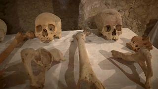 Привлекут ли туристов мумии из Луксора?