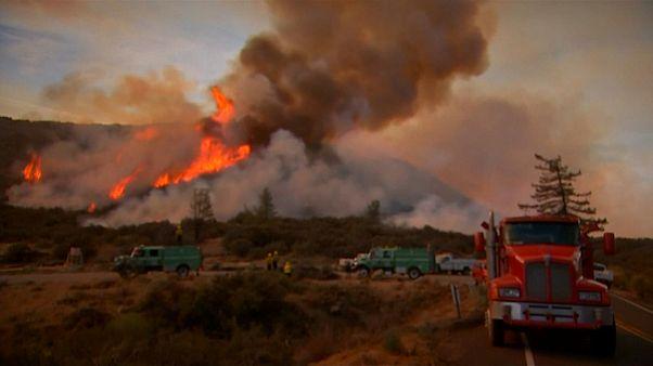 Kaliforniya: Yangınlarla mücadele devam ediyor