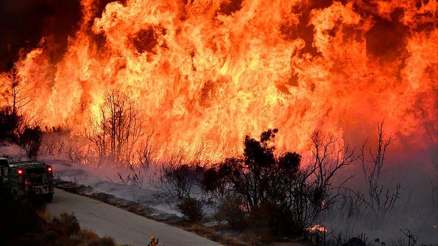 Riesige Flammen in Kalifornien: Flächenbrand breitet sich aus