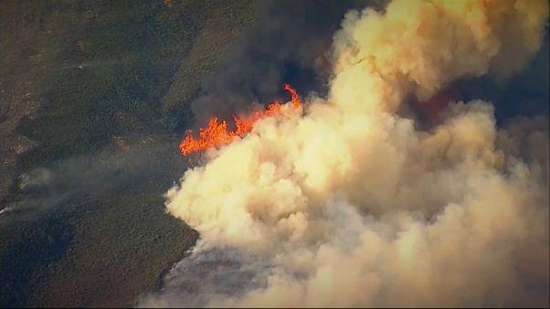 El devastador incendio Thomas sigue avanzando en California