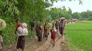 Several groups support claims of systematic rape of Rohingyas by Myanmar army