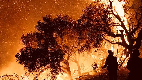 Firefighters in Carpinteria, California, USA, Dec. 10