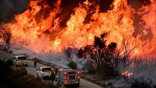 آتش سوزی کالیفرنیا؛ تخلیه شهر با نزدیک شدن خطر حریق به سانتا باربارا